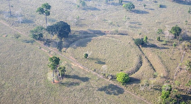 Calcula-se que o Brasil tenha 500 geoglifos - ironicamente, por causa do desmatamento, mais figuras estão sendo descobertas