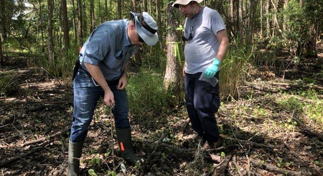 Os geólogos coletam amostras de solo para aprender como sua composição muda com as substâncias liberadas pelos cadáveres humanos