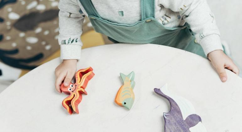 A mudança contemplará desde a embalagem dos brinquedos até a sua composição total
