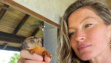 GiseleBündchen resgata bebê esquilo: 'Foi tão especial'