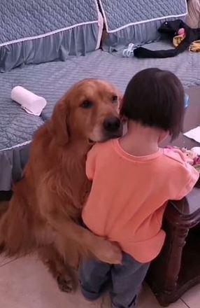 Em um momento de carinho, ele apoia a cabeça no ombro da pequena