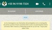 Golpistas usam Ministério da Saúde para fazer clonagem de Whatsapp