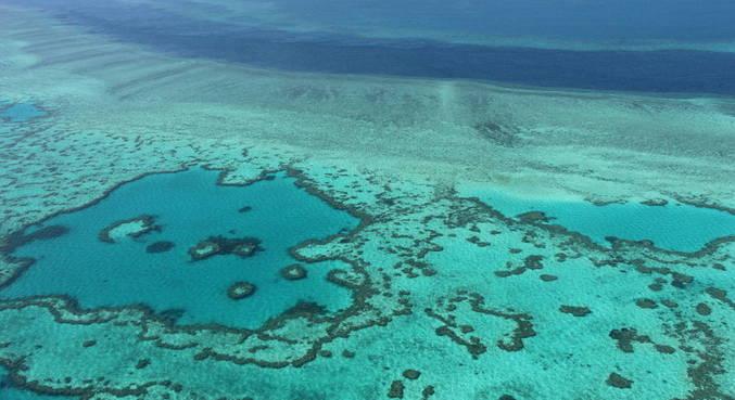 Grande Barreira de Corais não entra em lista de patrimônio em perigo