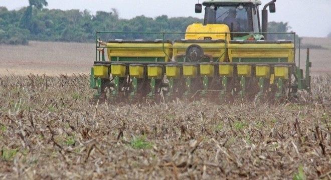 Soja impulsiona o resultado da safra de grãos