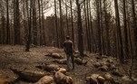 As altas temperaturas contribuíram também para ampliar os graves incêndios florestais em diversos países. A Itália registrou 528 focos de incêndio em apenas 12 horas na madrugada da última quinta-feira, a maioria na Sicília. Na Grécia, em duas semanas as chamas devastaram mais de 100 mil hectares de vegetação, principalmente na ilha de Eubeia (foto), a região mais atingida.A Rússia também sofreu muitos danos, com mais de 4 milhões de hectares queimados no leste do país