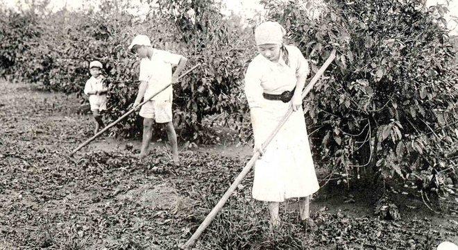 O café atraiu milhares de imigrantes japoneses ao Brasil