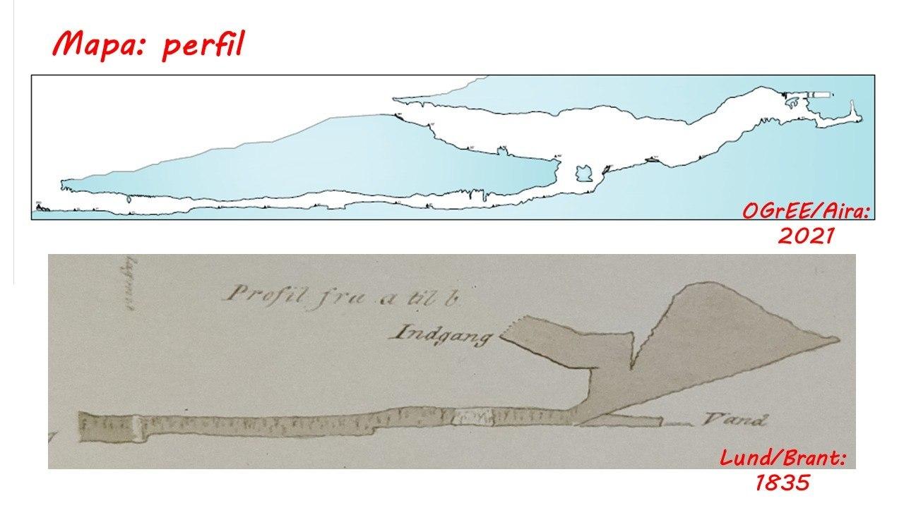 Desenho feito em 2021 mostra similaridade com registro feito por Lund e Brant em 1835