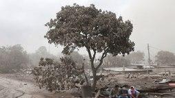 Sobe para 116 o número de mortos em erupção do Vulcão de Fogo na Guatemala ()