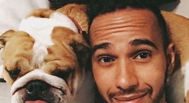 Hamilton costuma compartilhar a rotina do animal em suas redes sociais