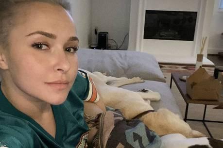 Hayden Panettiere ficou ferida no rosto e nas mãos