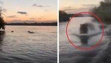 Tensão total: hipopótamo furioso persegue barco cheio de turistas