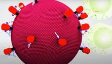 Anticorpos e fototerapia associados eliminam vírus HIV em laboratório