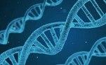 Uma amostra de DNA chegou a ser colhida do corpo em questão. Mas, a família decidiu realizar a cerimônia fúnebre do ente querido sem checar o resultado
