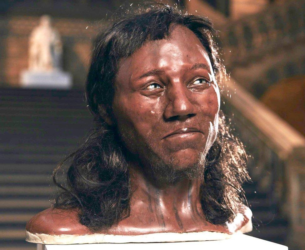 A reconstrução do rosto do Homem de Cheddar revelou que ele tinha a pele escura e olhos azuis