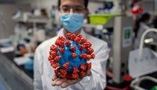 Linhagens, cepas e mutações do coronavírus: o que são e quando devemos nos preocupar