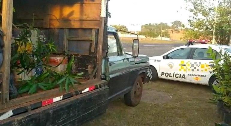Homem é preso após transportar quase 1 tonelada de maconha escondida em potes de planta