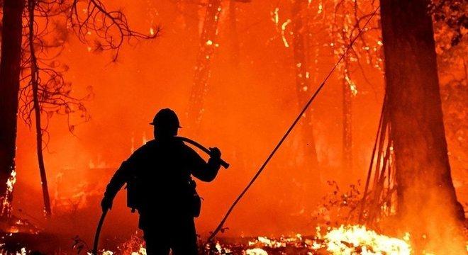 Uma série de modelos tenta prever os locais de ocorrência e a intensidade dos incêndios