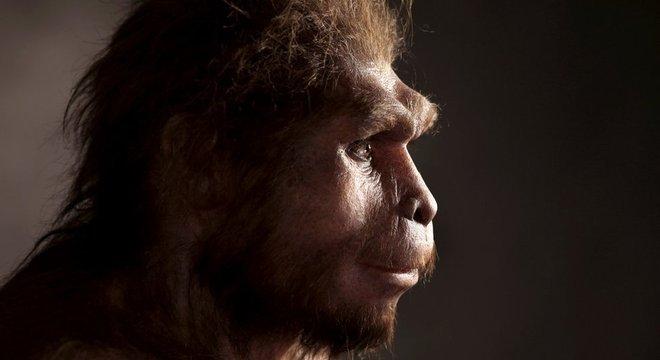 Reconstrução do Homo erectus, conhecido como o primeiro ser humano a andar totalmente ereto