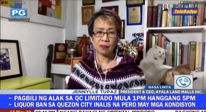 Durante importante debate sobre medidas de quarentena nas Filipinas, a repórter Doris Bigornia acabou sendo distraída por seus gatinhos em conflito