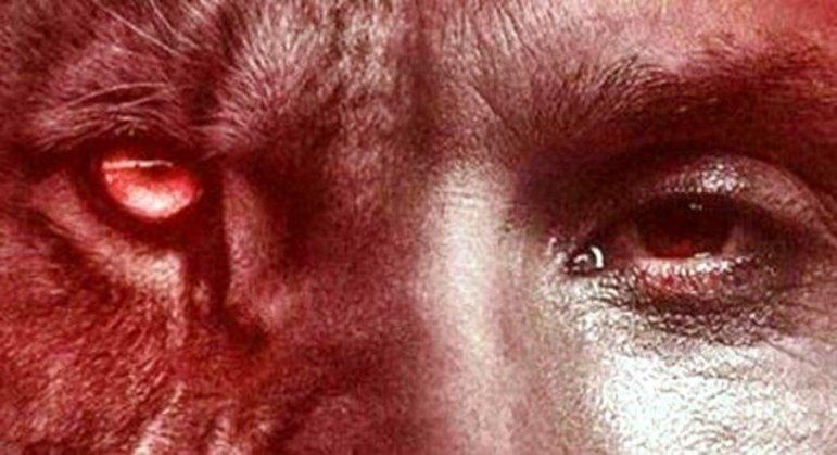 No Twitter, o olho do animal selvagem e o olho do Ibra