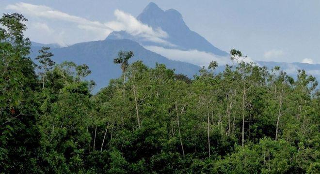 ICMBio determina reabertura de Unidades de Conservação Federais