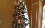 Os gatinhos daqui devem dar muito trabalho. O tutor achou mais fácil embalar a árvore toda com plástico