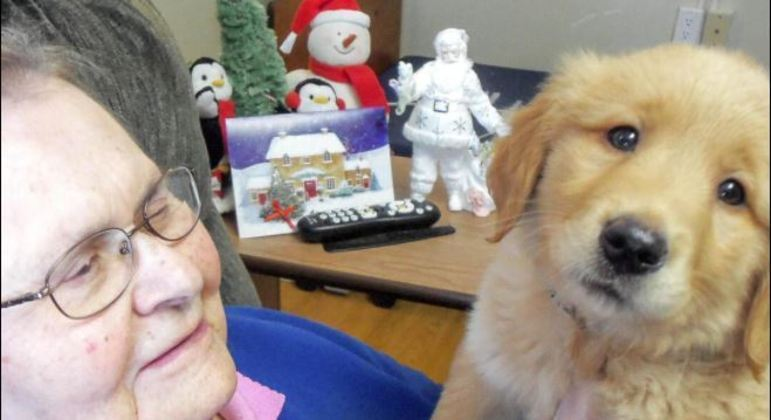Gracie chegou para poder amenizar a solidão dos idosos que não podem receber visitas