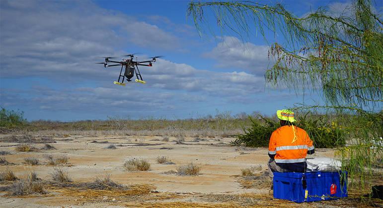 Os drones foram usados para matar ratos em Galápagos
