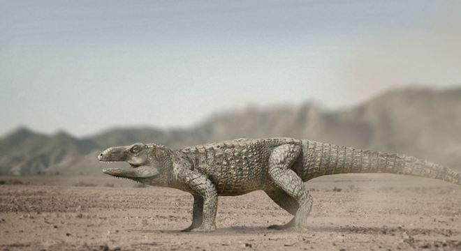 'Não tem relação com as aves nem com os dinossauros, mas está na linhagem que deu origem aos crocodilos', explica pesquisador