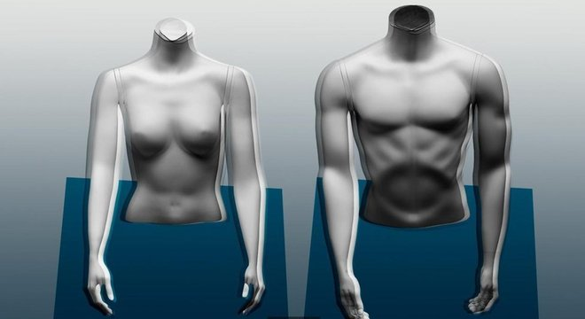 Os homens tendem a ter um percentual maior de massa muscular do que as mulheres por uma questão hormonal