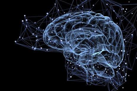 Pesquisa da USP diz ter encontrado relação causal entre inflamação em células cerebrais e autismo