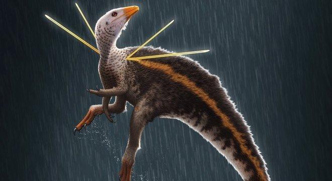 Ubirajara jubatus tinha tamanho aproximado de uma galinha e viveu há 110 milhões de anos