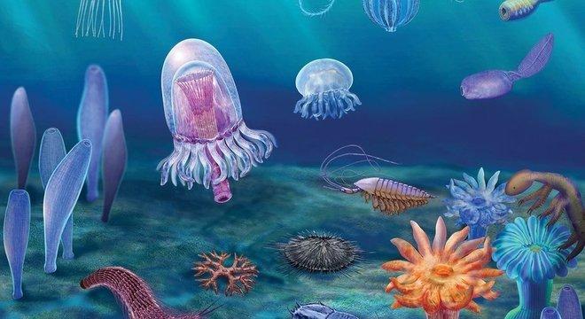 Acredita-se que os fósseis descobertos tenham cerca de 518 milhões de anos