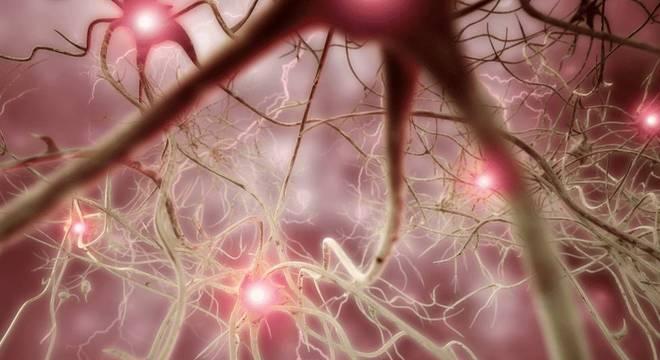 Um dos objetivos da empresa é combater algumas doenças neuronais