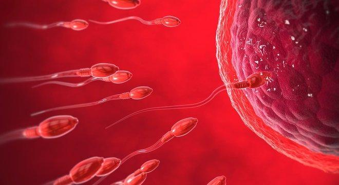 Há aqueles que acreditam que o momento em que o óvulo é fecundado faz a diferença