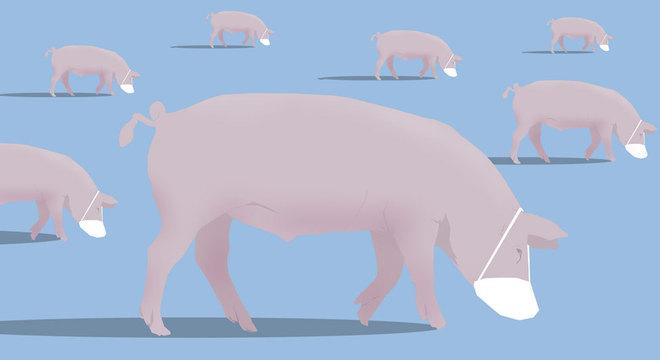 Smithfield é a nona maior processadora de carne de porco dos Estados Unidos