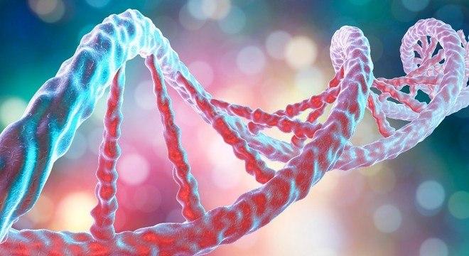 A técnica PCR exige aquecer o DNA para separar os fios das hélices duplas
