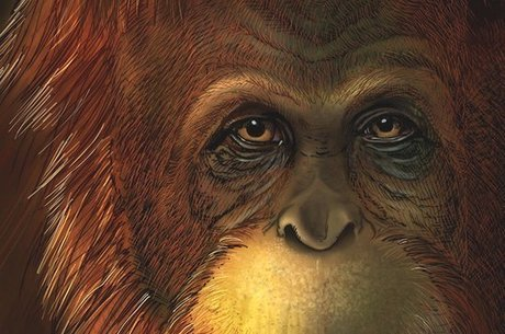 Ilustração reconstrói face do macaco: espécie chegava a 3 metros de altura e 600 kg
