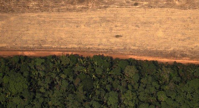 Joedson Alves Presidente da AEB destaca que problema tipicamente ecológico passou a ser um problema comercial