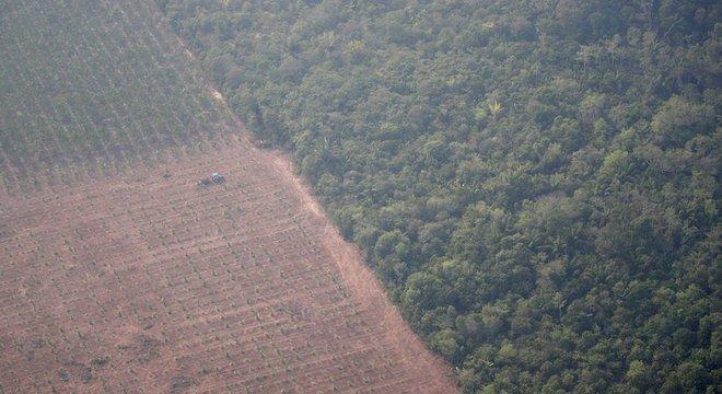 Imagem aérea do último dia 22 mostra trator em uma plantação ao lado de floresta perto de Porto Velho (RO); presidente da SRB não vê contradição entre preservar e aumentar produção
