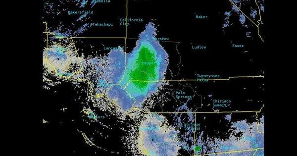 A nuvem gigantesca de joaninhas que confundiu satélites no céu da Califórnia