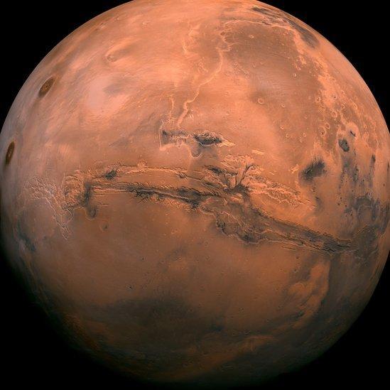 Segundo Thais Russomano, maior desafio para a exploração de Marte por humanos é justamente a área da fisiologia espacial