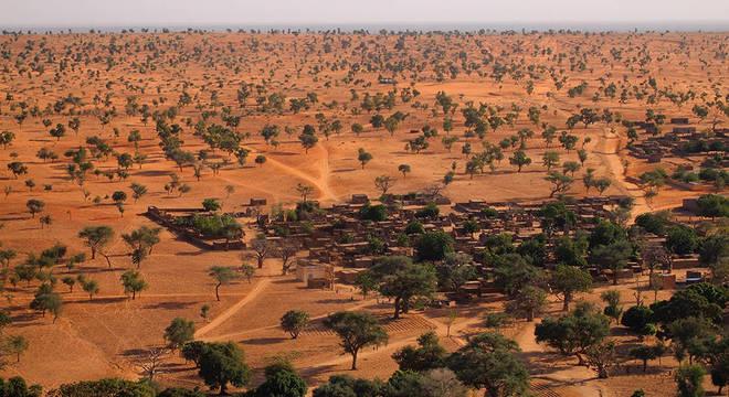O Saara e o Sahel têm muito mais árvores do que se pensava