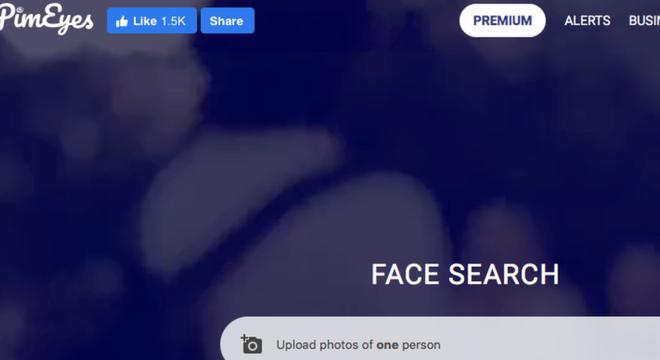 Os usuários podem enviar uma foto e receber informações sobre onde imagens daquela pessoa foram publicadas