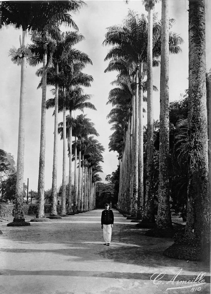 Antigo Jardim Botânico: Armeilla ganhava a vida vendendo fotos para revistas da época, como Kósmos e Careta
