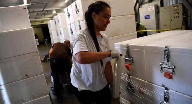 Uma vez de volta ao laboratório, os núcleos de gelo são empacotados em caixas protetoras e colocados em câmaras frigoríficas