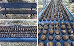 Bolotas (seriam sementes?) se encaixam perfeitamente no banco do parque onde estão
