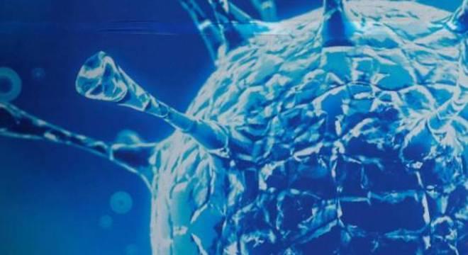 Remédios promissores contra a covid-19 são resultado de estudos