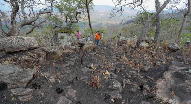 Incêndios já destruíram milhares de hectares da Amazônia boliviana