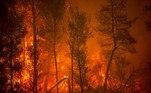 incêndio aquecimento global